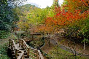 Suijin Park