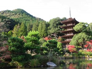 National treasure Ruriko-ji Temple's Five-Storied Pagoda